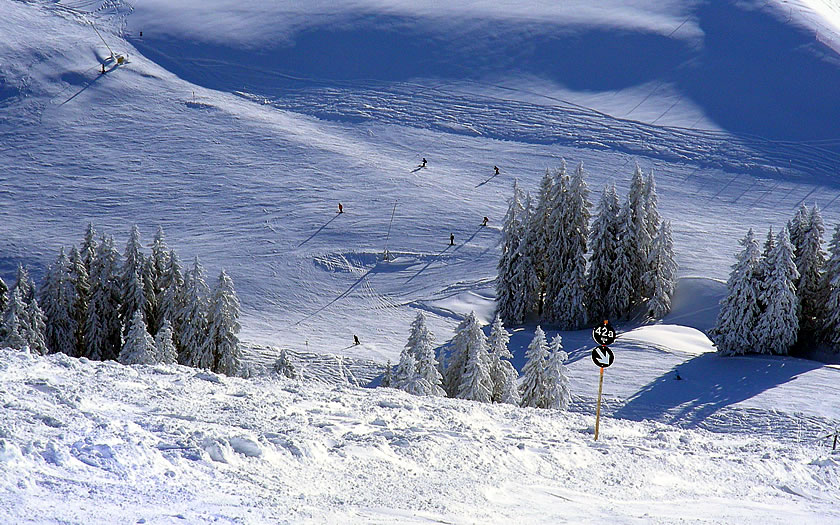 Skiing in Söll, Austria